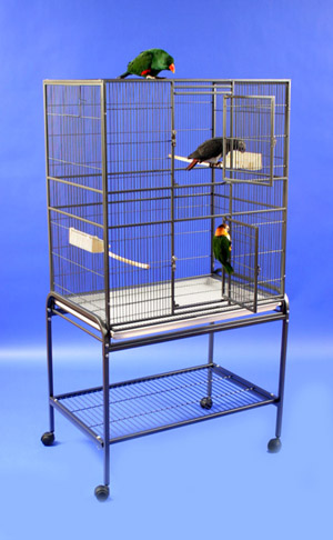 EFC Everyone's Favorite Budgie Cage